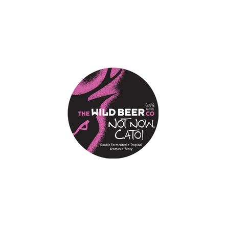 Wild Beer Co Not Now Cato